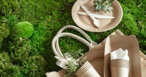 8 Practical Ways Anyone Can Be More Environmentally Friendly